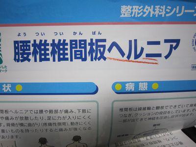 IMG_5263.jpg