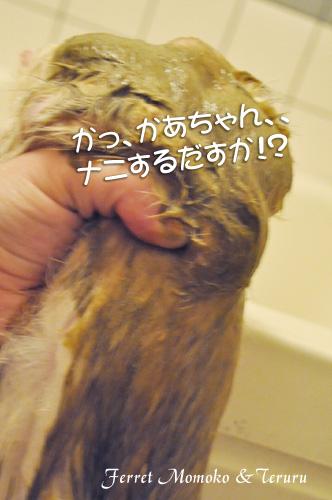 2012_0417_03.jpg