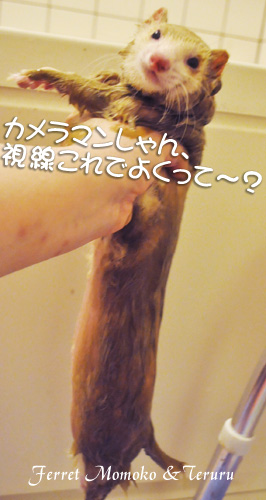 2012_0417_04.jpg