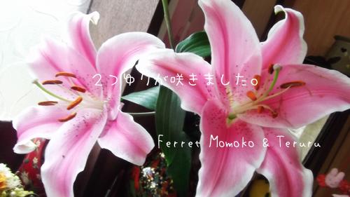 2013_0923_06.jpg