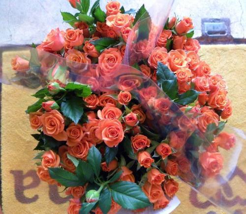 1112b_convert_20101112210113.jpg
