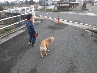 ありすと散歩①