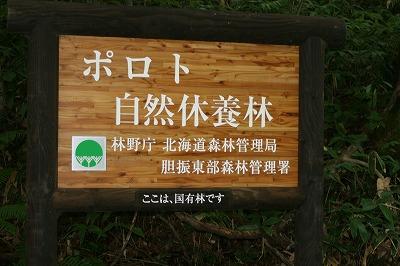 ポロト自然休養林100821