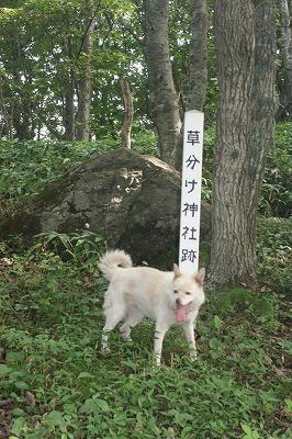 草分け神社100829