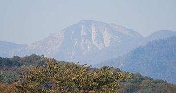 10・牝・日高山脈
