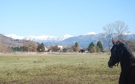 12・冬晴れ・シルと日高山脈