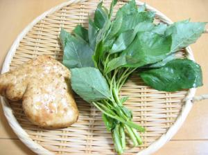 食のチカラ(大和芋)
