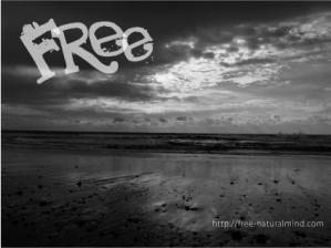 freefrier.jpg