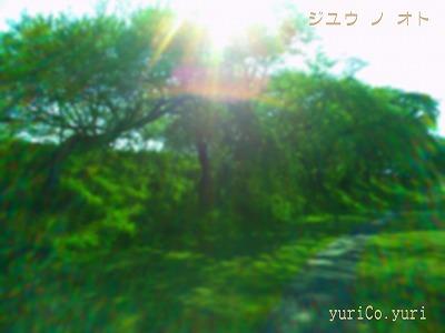 PICT0432.jpg