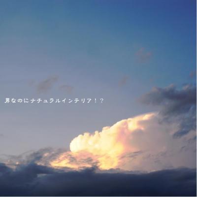 162_convert_20110911011415.jpg