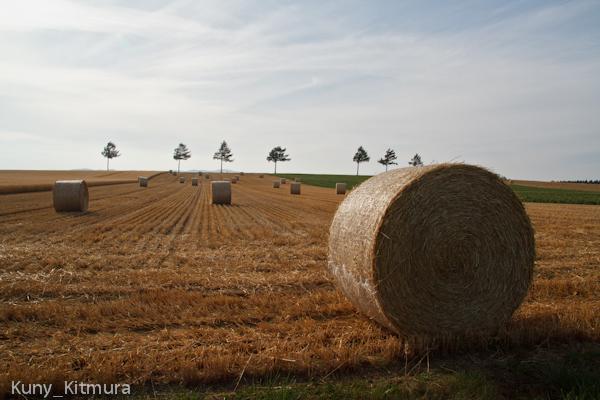 麦藁ロール