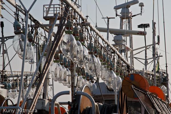 イカ漁の漁り火電球