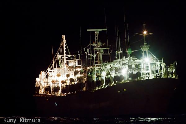 大形イカ漁船