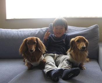 2010529daichan.jpg