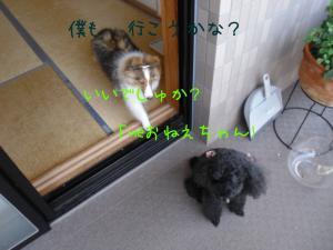 p4O85Mk9[1]_convert_20100728220014[1]