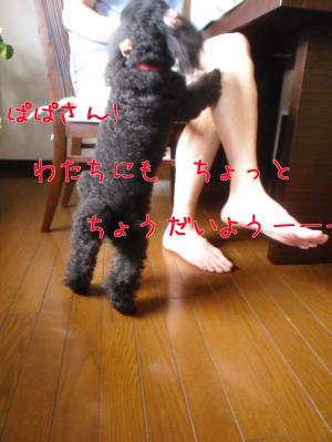 4gZET[1]_convert_20100811180902[1]
