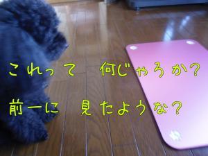 pbMjM[1]_convert_20100827120038[1]