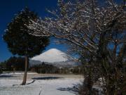 2011_03_04 ひな祭り寒波降雪 東田中