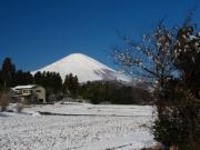 2011_03_04 ひな祭り寒波降雪 深沢