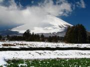 2011_03_04 ひな祭り寒波降雪 上小林