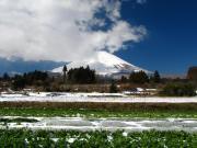 2011_03_04 ひな祭り寒波降雪 塚原