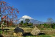 2011_12_12 パール富士・東山