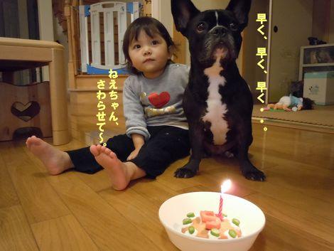 みかん5歳 誕生日 003 101115