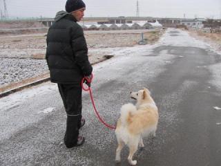 雪中散歩①IMG_1560