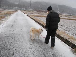 雪中散歩②_1565