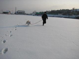雪のグランド走①_1755