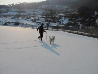 雪のグランド走_1756