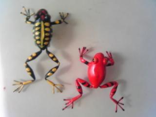 カエルマグネット