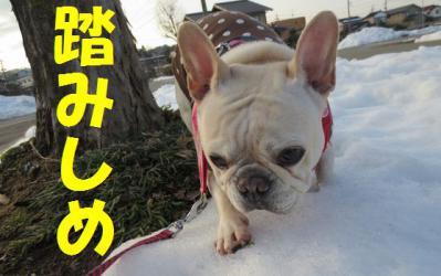 踏みしめfumi
