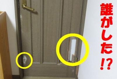 居間ドア1ma