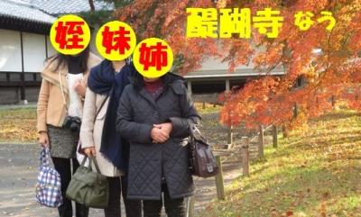 醍醐寺dai