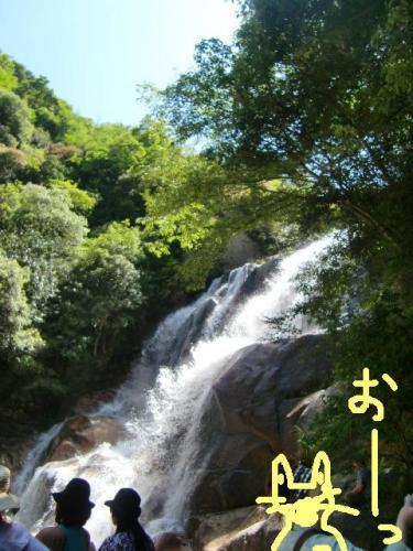 妹背の滝の流れ