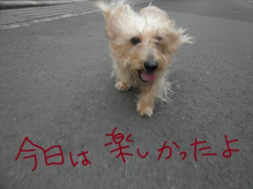 069_convert_20101126004039.jpg
