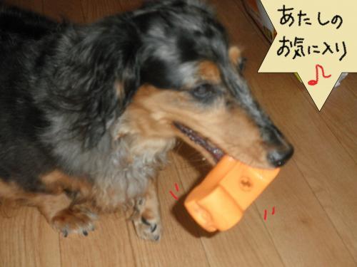 113+(2)_convert_20101029103246.jpg