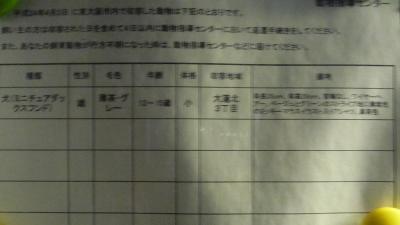 o0800045011912882780東大阪1-2