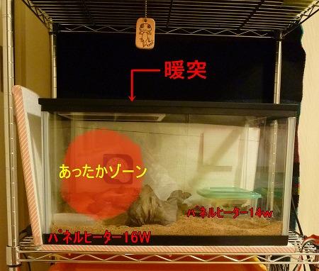 もんちゃん 048-crop