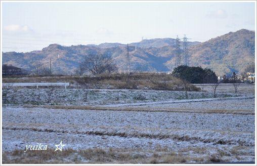 雪景色201
