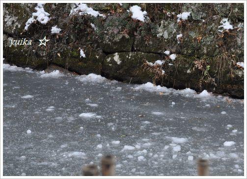 氷池 (1)