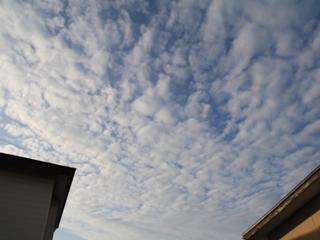20111105 朝の空