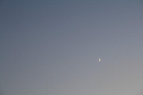 20130910 夕暮れの月_1