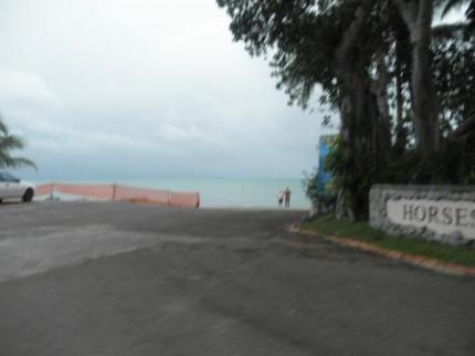 海が見えてきた