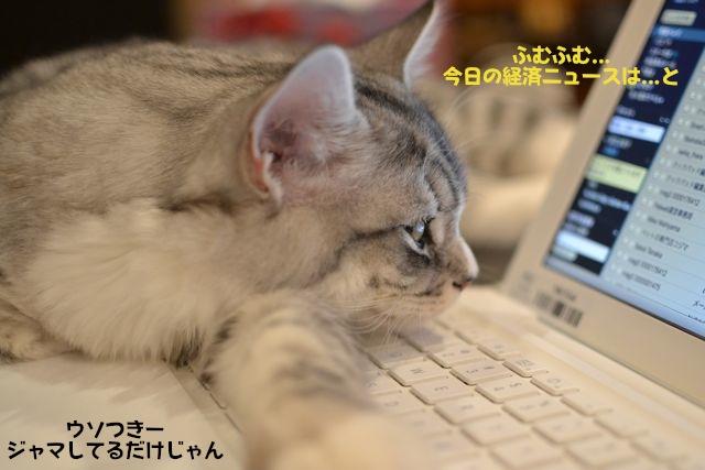 すーちゃんとコンピューター2