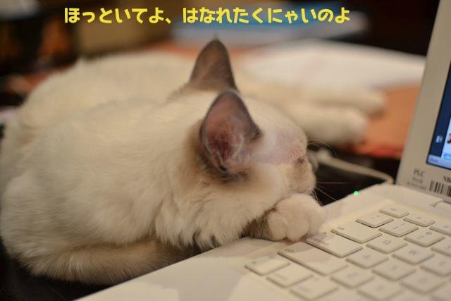 あいちゃんとコンピューター1