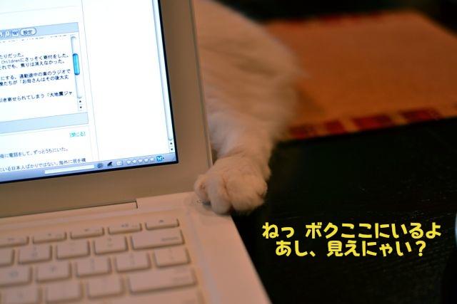 あいちゃんとコンピューター2