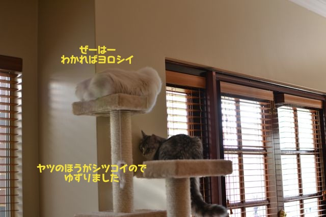 タワー攻防戦3