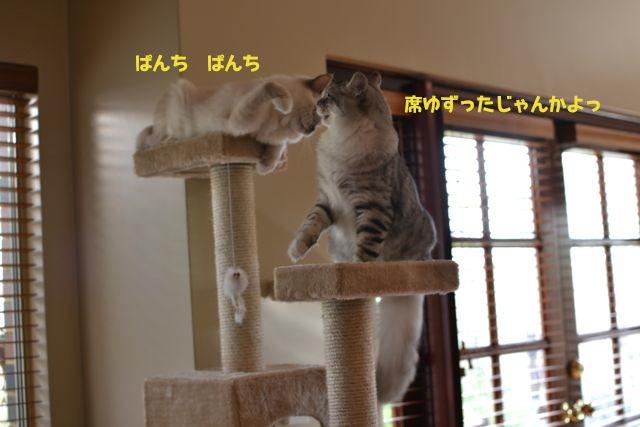 タワー攻防戦5